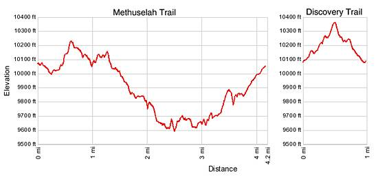 Discovery Trail and Methuselah Trail Elevation Profile