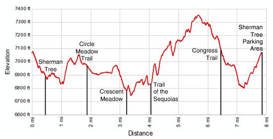 Giant Forest Loop Elevation Profile