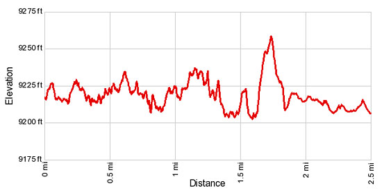 Elevation Profile Interlaken