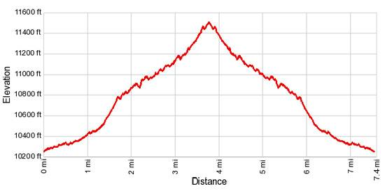 Elevation Profile Rustler Gulch