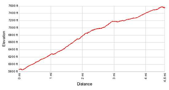 Elevation Profile - Piegan Pass