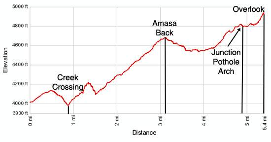 Amasa Back elevation profile