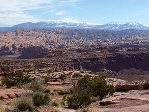 View of Behind the Rocks and the La Sal Mountains from the Amasa Back trail.