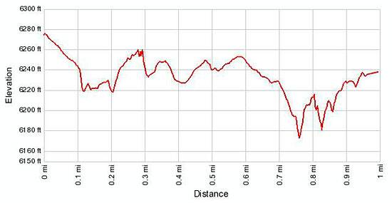 Grand View Point elevation profile