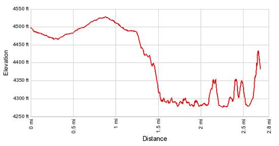 Elevation Profile - Lower Butler Wash